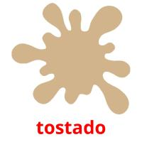 tostado picture flashcards