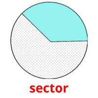 sector picture flashcards