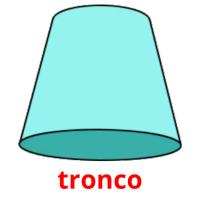 tronco picture flashcards