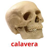 calavera picture flashcards