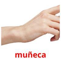 muñeca picture flashcards