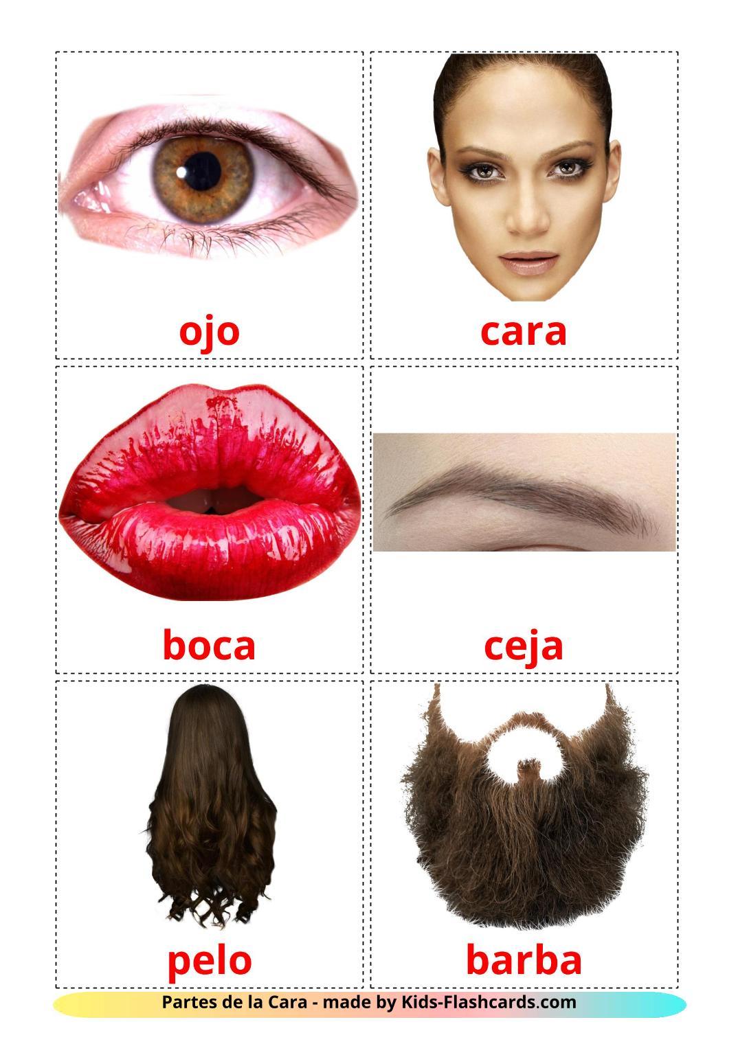 Face - 20 Free Printable spanish Flashcards
