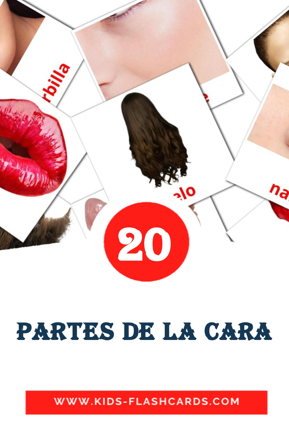 20 Cara Picture Cards for Kindergarden in spanish