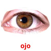 ojo picture flashcards