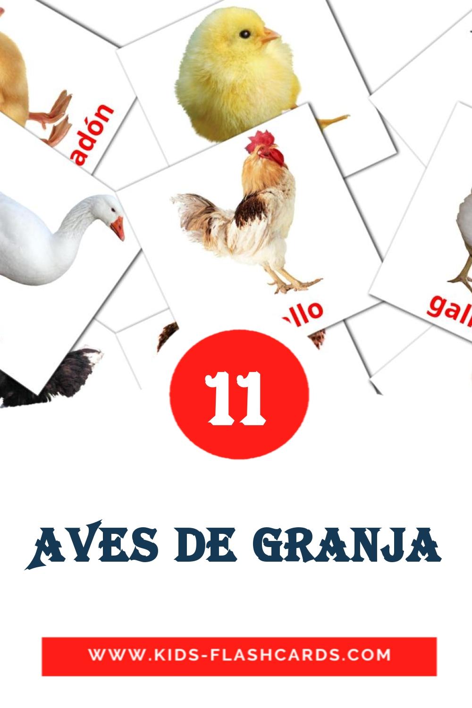11 aves de granja Picture Cards for Kindergarden in spanish