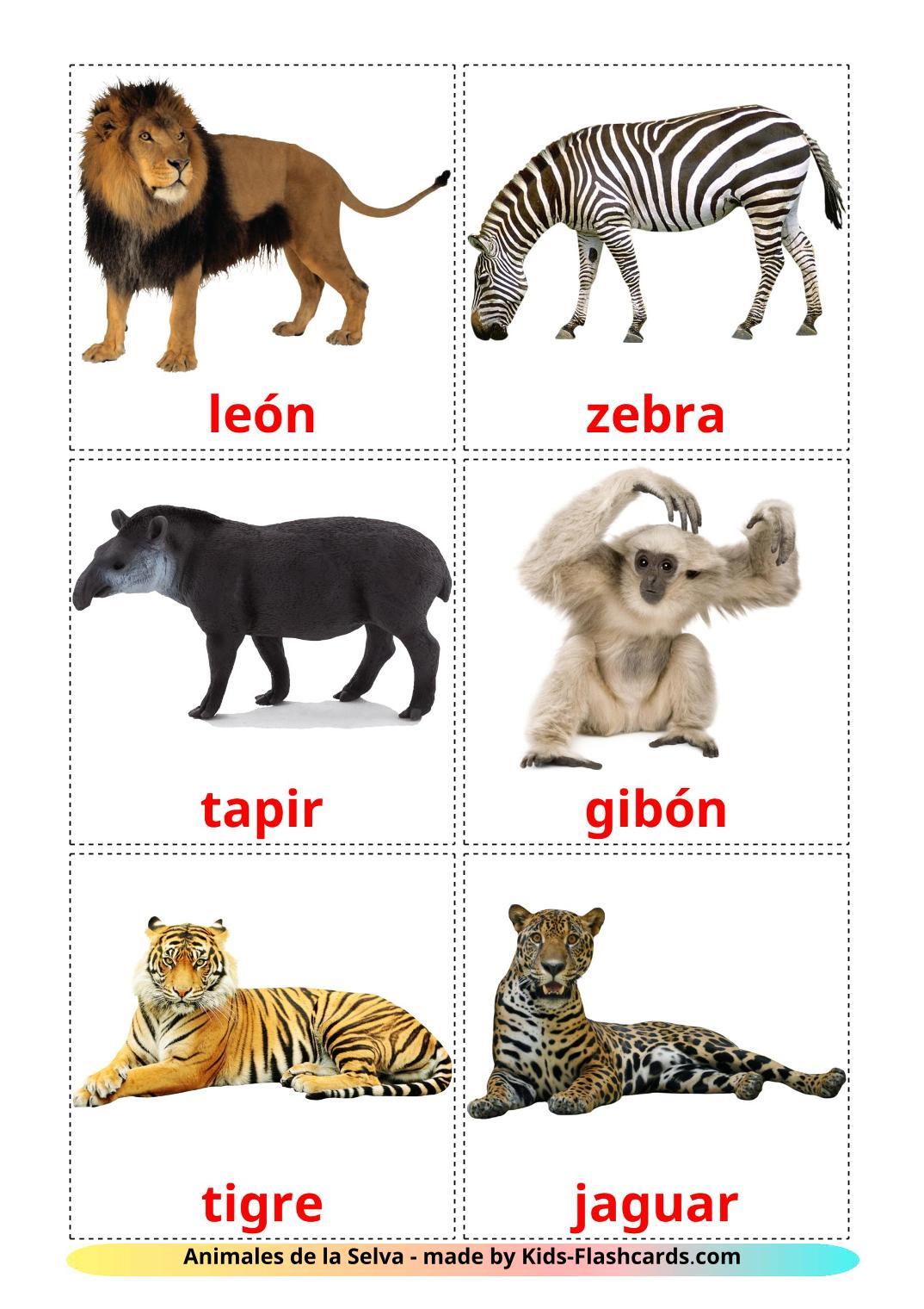 Jungle animals - 21 Free Printable spanish Flashcards