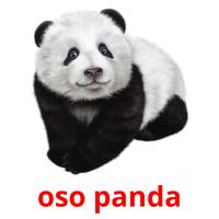 oso panda picture flashcards