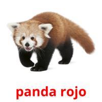 panda rojo picture flashcards