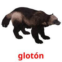 glotón picture flashcards