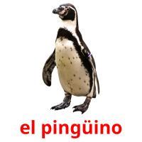 el pingüino picture flashcards