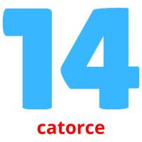 catorce picture flashcards