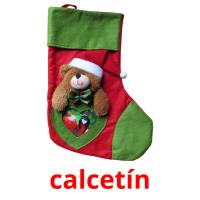 calcetín picture flashcards