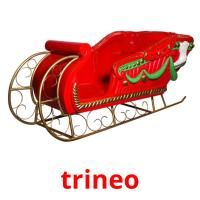 trineo picture flashcards