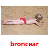 broncear picture flashcards