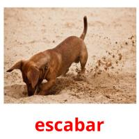 escabar picture flashcards