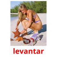 levantar picture flashcards