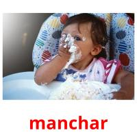 manchar picture flashcards