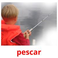 pescar picture flashcards
