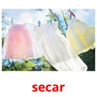 secar picture flashcards
