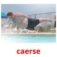 caerse picture flashcards