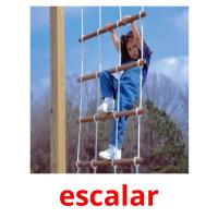 escalar picture flashcards