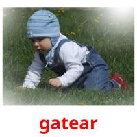 gatear picture flashcards