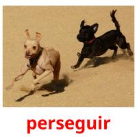 perseguir picture flashcards