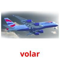 volar picture flashcards