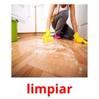 limpiar picture flashcards