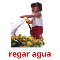 regar agua picture flashcards
