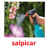 salpicar picture flashcards