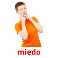 miedo picture flashcards