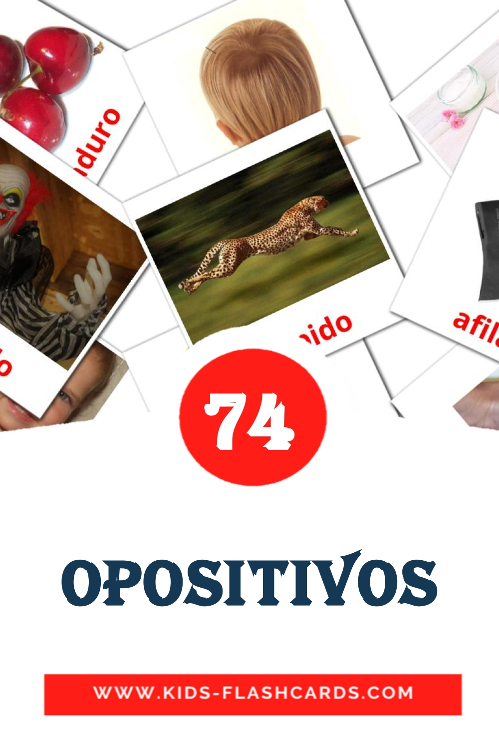 74 Opositivos  Picture Cards for Kindergarden in spanish