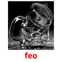 feo picture flashcards