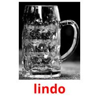 lindo picture flashcards