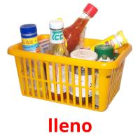 lleno picture flashcards
