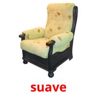 suave picture flashcards