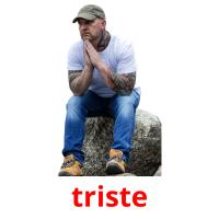 triste picture flashcards