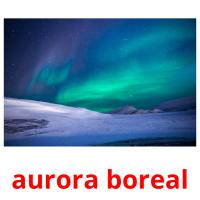 aurora boreal picture flashcards