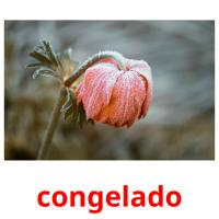 congelado picture flashcards