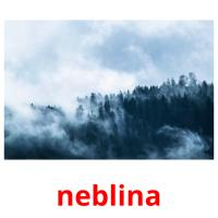 neblina picture flashcards