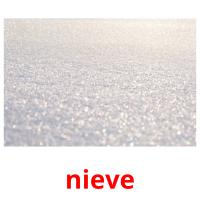 nieve picture flashcards