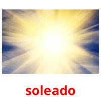soleado picture flashcards