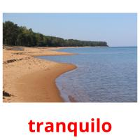 tranquilo picture flashcards