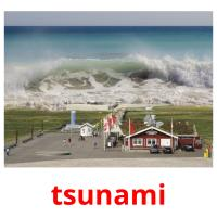 tsunami picture flashcards
