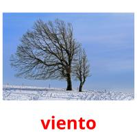 viento picture flashcards