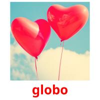 globo picture flashcards