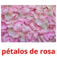 pétalos de rosa picture flashcards
