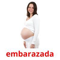embarazada picture flashcards