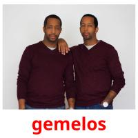 gemelos picture flashcards